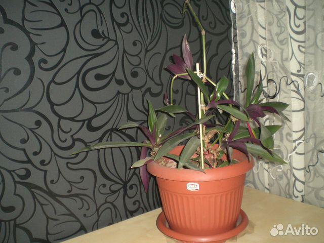 Подставка под комнатные цветы