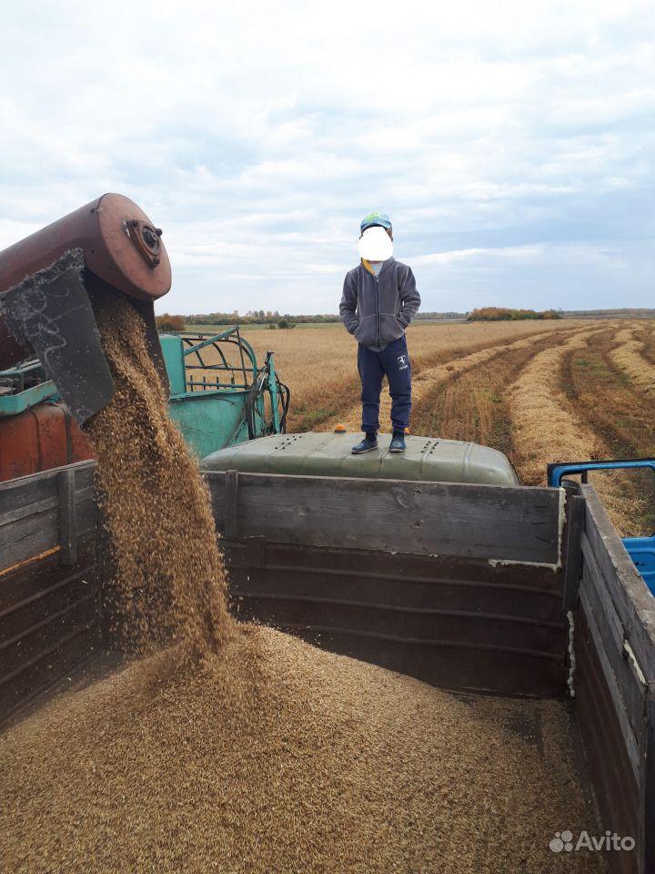Продам зерно смесь и дробленку в мешках