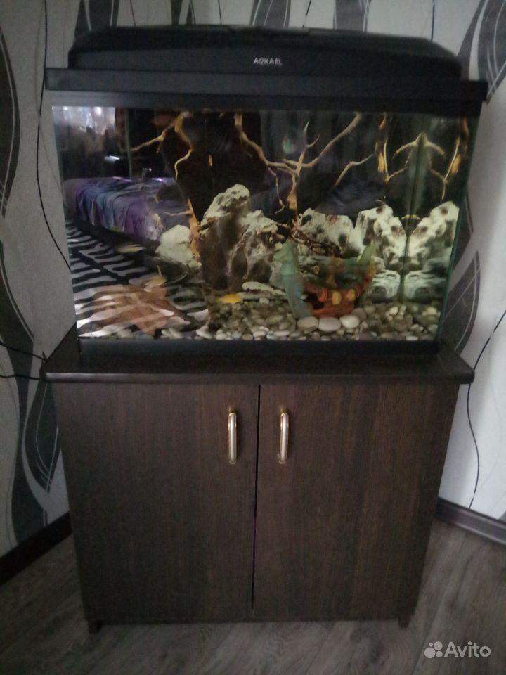 Аквариум 65л.+ тумба купить на Зозу.ру - фотография № 2