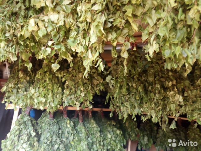 Веник дубовые, липовые, березовые с травами  89501639171 купить 2