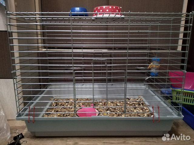Клетка для крыс и шиншилл  89371825509 купить 1