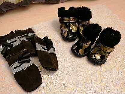 Обувь для маленьких собак